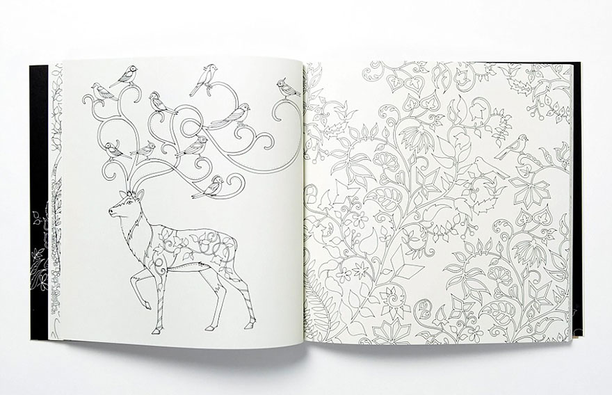 coloring-books-for-adults-johanna-basford-2  880