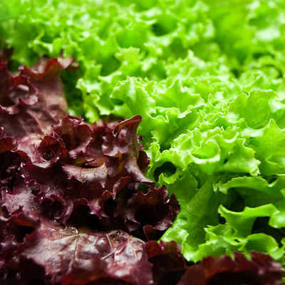 Upgrade Your Salad Greens 07 pg full